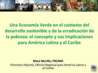 Una Econom a Verde en el contexto del desarrollo sostenible y de la erradicaci n de la pobreza: el concepto y sus implic