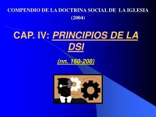 CAP. IV: PRINCIPIOS DE LA DSI   nn. 160-208