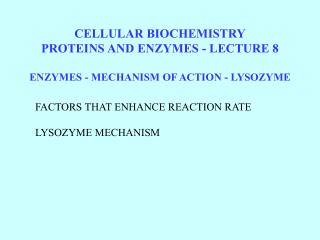 CELLULAR BIOCHEMISTRYPROTEINS AND ENZYMES - LECTURE 8  ENZYMES - MECHANISM OF ACTION - LYSOZYME
