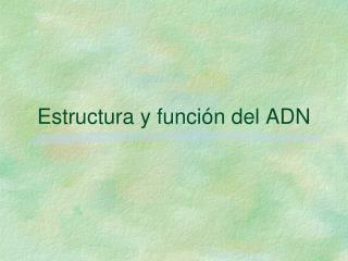 Estructura y funci n del ADN