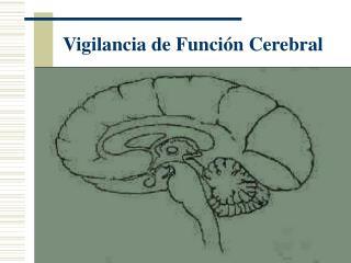 Vigilancia de Funci n Cerebral