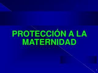 PROTECCI N A LA MATERNIDAD