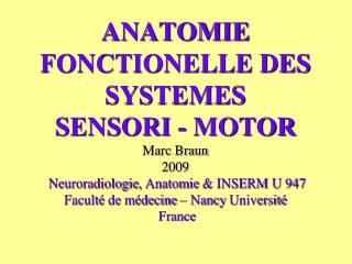 ANATOMIE FONCTIONELLE DES SYSTEMES   SENSORI - MOTOR  Marc Braun 2009  Neuroradiologie, Anatomie  INSERM U 947  Facult