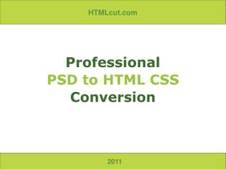 Professional PSD to HTML CSS Conversion