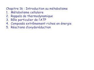 Chapitre 16 : Introduction au m tabolisme M tabolisme cellulaire Rappels de thermodynamique R le particulier de l ATP Co