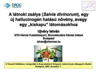 A l tnoki zs lya Salvia divinorum, egy  j hallucinog n hat s  n v ny, avagy egy  kiskapu  l tom sokhoz