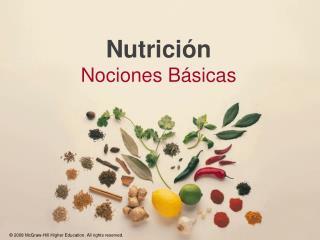 Nutrici n  Nociones B sicas