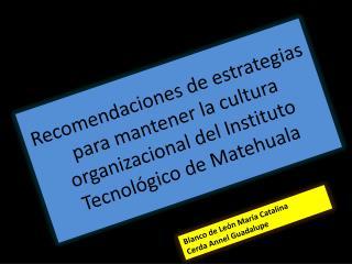 Recomendaciones de estrategias para mantener la cultura organizacional del Instituto Tecnol gico de Matehuala
