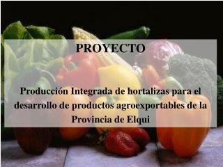 PROYECTO  Producci n Integrada de hortalizas para el desarrollo de productos agroexportables de la Provincia de Elqui