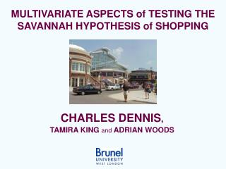 MULTIVARIATE ASPECTS of TESTING THE SAVANNAH HYPOTHESIS of SHOPPING