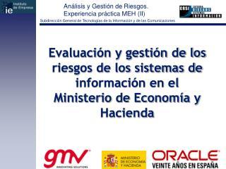 Evaluaci n y gesti n de los riesgos de los sistemas de informaci n en el Ministerio de Econom a y Hacienda