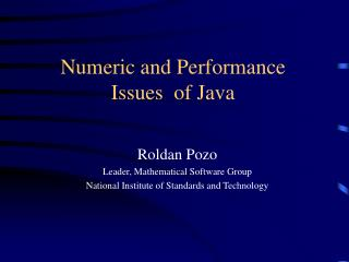 Numeric and Performance Issues  of Java