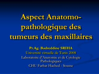 Aspect Anatomo-pathologique des tumeurs des maxillaires