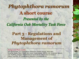 Regulations and Management of Phytophthora ramorum