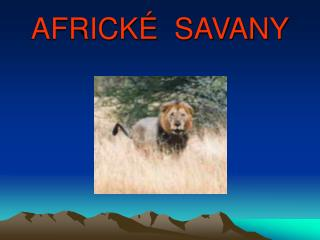 AFRICK   SAVANY