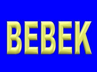 Bebek Gaggenau Servisi |(~ 342 00 24  |)~ Bebek Etiler Gagge