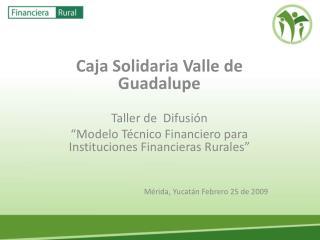 Caja Solidaria Valle de Guadalupe  Taller de  Difusi n   Modelo T cnico Financiero para Instituciones Financieras Rurale