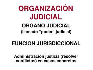 ORGANIZACI N JUDICIAL
