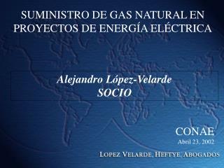 SUMINISTRO DE GAS NATURAL EN PROYECTOS DE ENERG A EL CTRICA