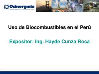 Uso de Biocombustibles en el Per   Expositor: Ing. Hayde Cunza Roca