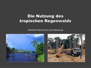 Die Nutzung des  tropischen Regenwalds