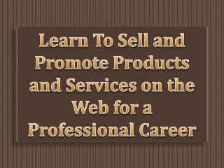 Learn To Sell and Promote Products and Services on the Web