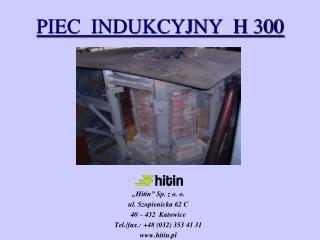 PIEC  INDUKCYJNY  H 300