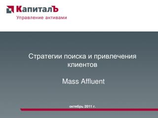 Mass Affluent         2011 .