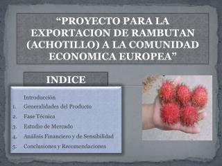 PROYECTO PARA LA EXPORTACION DE RAMBUTAN ACHOTILLO A LA COMUNIDAD ECONOMICA EUROPEA