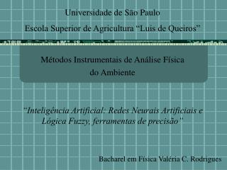 M todos Instrumentais de An lise F sica  do Ambiente    Intelig ncia Artificial: Redes Neurais Artificiais e L gica Fuzz