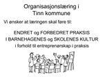 Organisasjonsl ring i  Tinn kommune