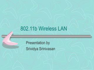 802.11b Wireless LAN