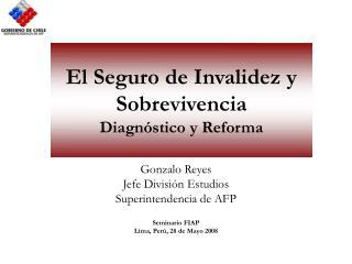 El Seguro de Invalidez y Sobrevivencia Diagn stico y Reforma