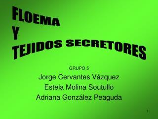 GRUPO 5 Jorge Cervantes V zquez Estela Molina Soutullo Adriana Gonz lez Peaguda