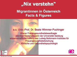 Nix verstehn    Migrantinnen in  sterreich Facts  Figures