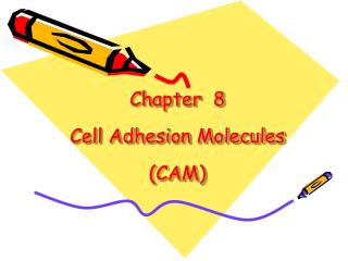 Chapter  8  Cell Adhesion Molecules CAM