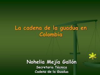 La cadena de la guadua en Colombia