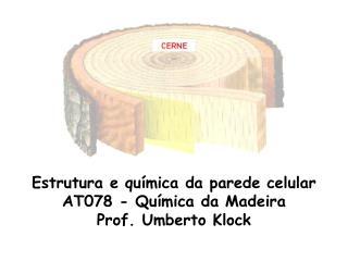 Estrutura e qu mica da parede celular AT078 - Qu mica da Madeira Prof. Umberto Klock