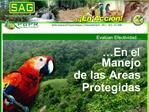 En el Manejo de las Areas Protegidas
