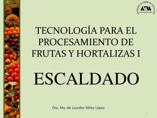 TECNOLOG A PARA EL PROCESAMIENTO DE FRUTAS Y HORTALIZAS I