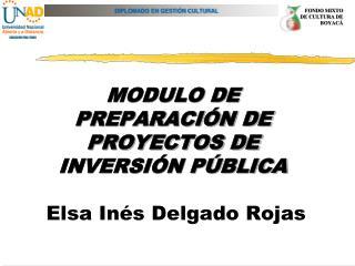 MODULO DE PREPARACI N DE PROYECTOS DE INVERSI N P BLICA   Elsa In s Delgado Rojas