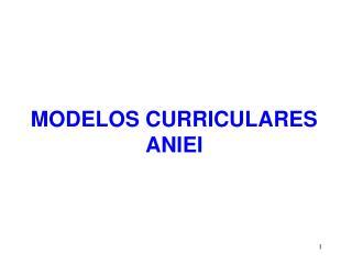MODELOS CURRICULARES ANIEI