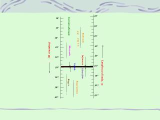 I pezzettini di sughero, la superficie dell acqua, costituiscono un sistema meccanico in equilibrio.