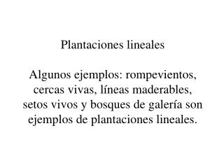 Plantaciones lineales  Algunos ejemplos: rompevientos, cercas vivas, l neas maderables, setos vivos y bosques de galer a