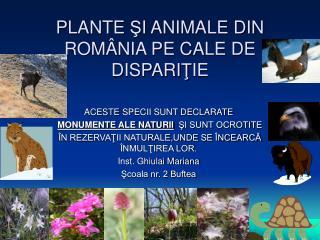 PLANTE SI ANIMALE DIN ROM NIA PE CALE DE DISPARITIE