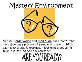 Mystery Environment