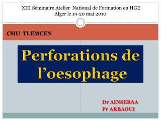 XIII S minaire Atelier  National de Formation en HGE    Alger le 19-20 mai 2010