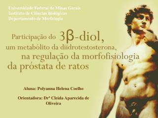 Universidade Federal de Minas Gerais Instituto de C  ncias Biol gicas Departamento de Morfologia