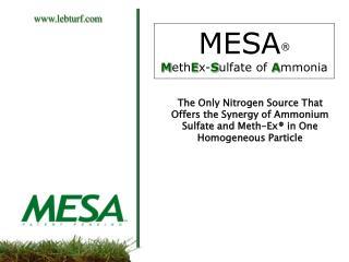 MESA  MethEx-Sulfate of Ammonia