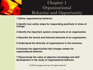 Chapter 1 Organizational  Behavior and Opportunity